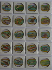 1960's  Royal Desserts Fish of the deep Complete set of 50 Coins Yellow variatio