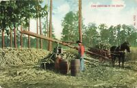 Postcard Cane Grinding in the South