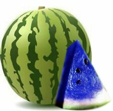 20pcs Rare Blue Watermelon Seeds Fruit Vegetables Organic Plant Seed Home Garden