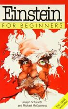 Einstein For Beginners by Joseph Schwartz and Michael McGuinness Paperback Book
