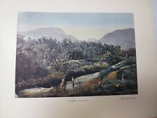 TAHITI: Gravure 19° in folio couleur /LA PAUTANA