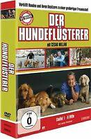 Der Hundeflüsterer - Staffel 1 [6 DVDs] von Sue-Ann Finck... | DVD | Zustand gut