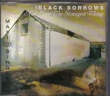 The Black Sorrows-Aint Love The Strangest Thing cd maxi single