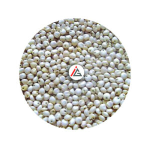 IAG Foods - White Sorghum Seeds - 1 KG