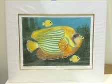 Mark Spain - Blue Striped Angel Fish - Collagraph - Mounted ( In Stock)