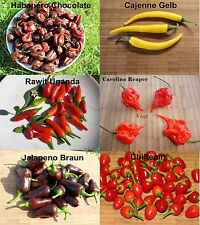 6 Sorten Chili Samen  Carolina Reaper ,Habanero, Jalapeno, Cajenne. je 10 st (2)