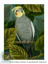 © ART - Art Quarrion Cockatiel Parrot Bird wildlife Original Artist Print by Di