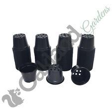200 x 13cm Plant Pots Black Plastic 1 Litre L lt Professional Thermoformed