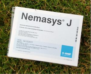 Nemasys Leatherjacket  Killer Nematodes 500 sqm (treats 250sqm) Non Harmful