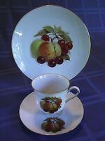 Vintage Bareuther Waldsassen Bavaria Tea Cup, Saucer, Plate Set ~ Fruit 122, 121