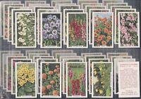 GALLAHER-FULL SET- GARDEN FLOWERS (48 CARDS) - EXC+++