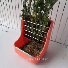 2in1 Feeder Bowl Grass Shelf Plastic Rabbit Grass Hay Feeder Rack Cat Bowl D143