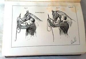 Principles of Dressage & Equestrian Art- GRUNDSATZE der DRESSUR & REITKUNST