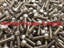 (10) M8-1.25x25mm Socket / Allen Head Cap Screw Stainless Steel 8mm x 25mm