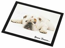 White Bulldog 'Yours Forever' Black Rim Glass Placemat Animal Table Gi, AD-BU9GP