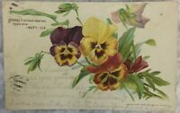 Vintage Postcard Pansies Freely ye have received Matt 10:8 Pansy  Posted 1908