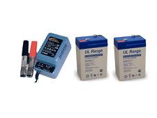 2 x Blei-Gel-Akku 6V, 4,5Ah inkl.1 x H-Tronic AL-300 Pro Bleiladegerät - Set