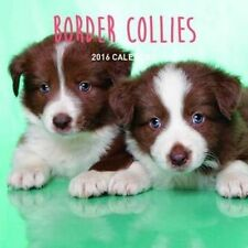 Border Collies 2018 Calendar by Universal Magazines Paperback Book