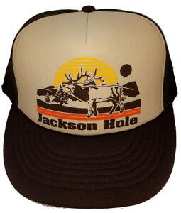 Jackson Hole Wyoming  Sunset Tan Brown Snapback Mesh Trucker Hat Cap