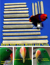 PEDICURE PERCH- 3/4 in dia- 5 in SINGLE-ENDED bark-textured stone for nails/beak