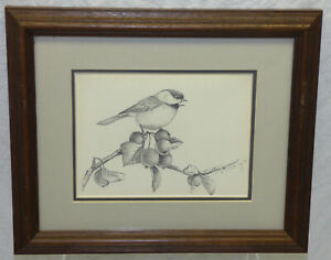 Vtg 1985 Signed Catherine McClung Original Pencil Drawing Bird Songbird Framed