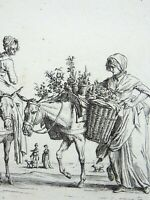 1816 Duplessi-Bertaux - Plant Seller - antique copper engraving