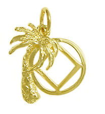 AA /& NA Anonymous Jewelry Classic Pendant 14k Gold #45-16 Large Size