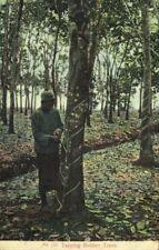 straits, Malay Malaysia, PENANG, Tapping Rubber Trees (1910s) Postcard