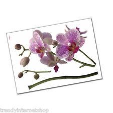 Wandsticker Orchidee Wandtattoo 17702 Orchideen Blüten