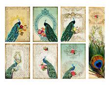 Beautiful Elegance Peacock Hang Tags and Bookmark - Scrapbooking, Paper Crafts