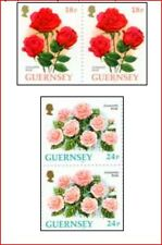 GUR97021 Roses and freesia  2 pairs in booklet