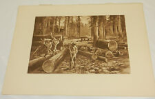 1888 Antique Print/LOGGING IN THE REDWOOD FOREST, CA/Photogravure by Hencke