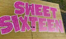 Sweet Sixteen Letter Set