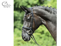 Busse Famous Comfort Bridle Flash Black Coloured Browbands All Sizes FREE P/&P