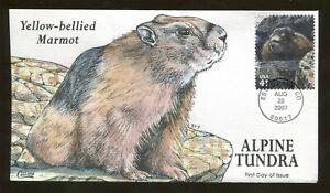 2007 - Estes Park Colorado - Alpine Tundra - Yellow-bellied Marmot - Collins FDC