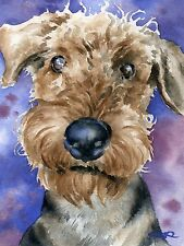 Airedale Terrier Dog Watercolor 8 x 10 Art Print Signed by Artist Djr