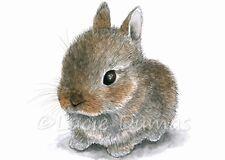 ACEO art print Hare 61 Rabbit bunny cute animal painting by L.Dumas