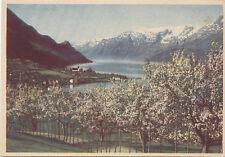 Ullensvang med Folgefonna HARDANGER Norge Brevkort Oppi Norway Postcard