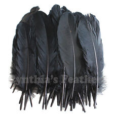 Turkey Feathers, Black Turkey Round Quill Feathers 6-8 inches 50 pcs