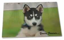 Husky Puppy 'Yours Forever' Extra Large Toughened Glass Cutting, Ch, AD-H67yGCBL