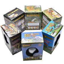 Boîte d'oeufs d'éclosion d'eau grande expansion animal jouet d'enfants d'oeuf FT