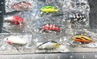 Challenger Junior Minnow JL-120F-T20 in HOT PANTS for Bass//Walleye//Perch//Crappie