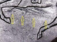1999 P Delaware State Quarter Spitting Horse with Feeder Finger Scrapes Error.