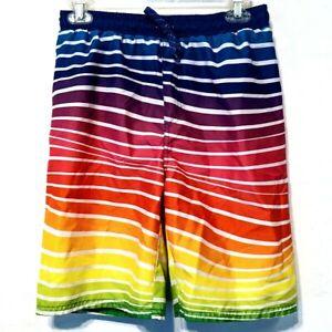 Sea Life Co Rainbow Striped Swim Trunks Boys Size XL