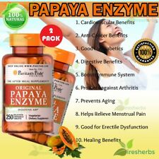 Papaya Enzyme Digestive Aid Constipation Lungs Eyes Chewable Supplement 500 Tabs