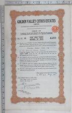1925 Antique Share Certificat Doré Valley Agrumes Estates Limité