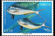 Fish of the Mediterranean mnh stamp 2016 Malta Euromed Mahi mahi Dolphinfish