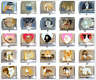 Dog Breed Italian Charms 1D5 fits 9mm Classic Nomination Bracelet - 26 choices