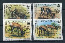 Somalia 436/39 postfrisch / WWF ..........................................1/3680