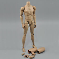 Narrow Shoulder 1/6 Action Figure NUDE MALE Body w Neck fit Hot Toys TTM19